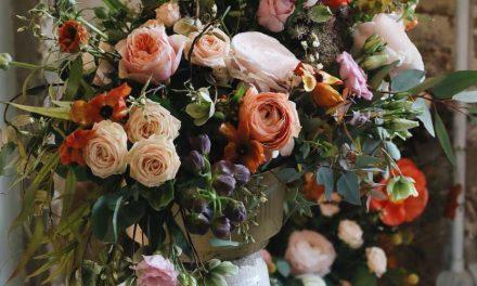 Cara Merawat Bunga Meja