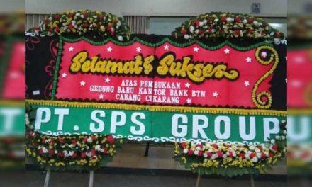 Sejarah Bunga papan di indonesia
